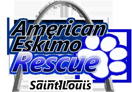 American Eskimo Rescue STL